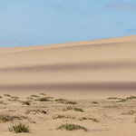 Sand dunes on Hoanib Skeleton Coast in Namibia